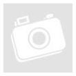 Kiwi-Co Gyümölcsrízs fagylaltpor 2 kg/cs