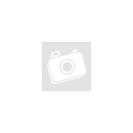 Fabbri Banán fagylaltpaszta 1,5 kg