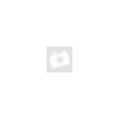 Fabbri New York Cheesecake félkész alap 1 kg/cs