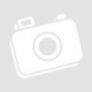 Kép 3/3 - Kiwi-Co Sárgavanília fagylaltpor 2 kg/cs